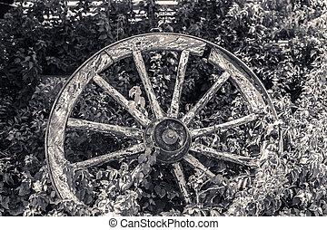 roue, cassé, vieux, chariot