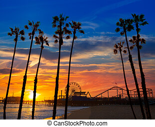 roue, monica, ferrys, californie, santa, coucher soleil, ...