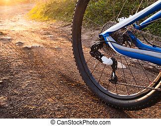 roue, vélo tout terrain, vélo, détail