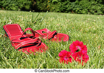 rouges, herbe, chaussures