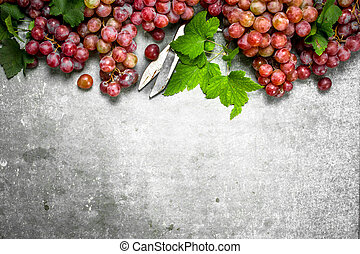 rouges, leaves., raisins, tas
