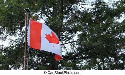 Rough Canadian flag at cottage.