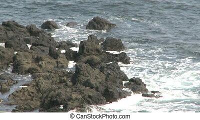 Rough coast - The rough coast of south Australia