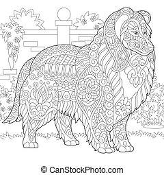 Rough Collie dog. Shetland Sheepdog or Sheltie. Coloring Page. Colouring picture. Freehand sketch drawing. Vector illustration.