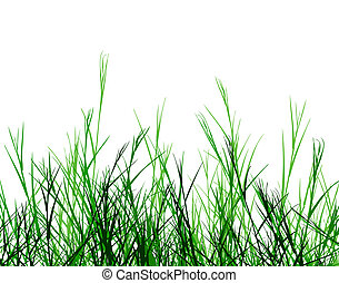 Foreground design of rough grass