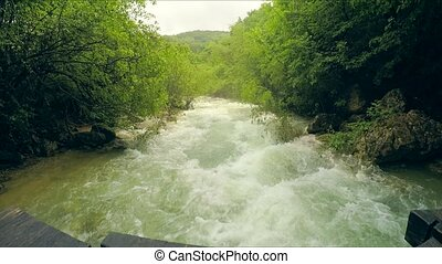 Rough Mountain River Flowing Down In Lush Green Forest