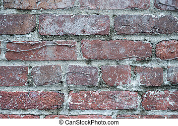 Rough red brick wall background