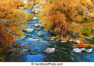 Rough river at autumn