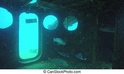 rouillé, bottom., nautique, naufrage, historique, marin, ...