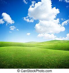rouler, champs, vert