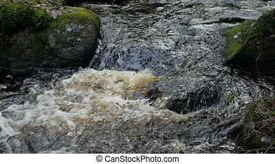rouler, par, ruisseau, pierres, full-flowing