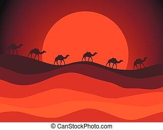 roulotte, illustrazione, vettore, sun., fondo, cammelli, disertare paesaggio