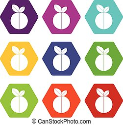 Round apple icon set color hexahedron