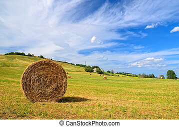 round bales of hay in the countryside