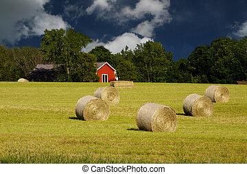 round bales on a rural farm field