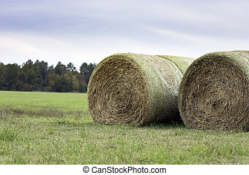 Round bales to the right