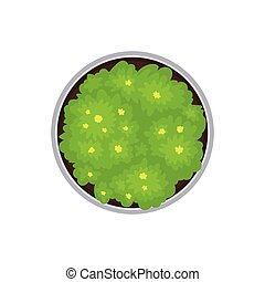 Round flowerbed. View from above. Vector illustration