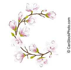Round Frame Made of Beautiful Magnolia Flowers