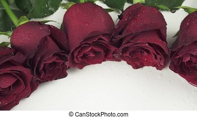 Round frame of red roses with water droplets on white background slow motion stock footage video