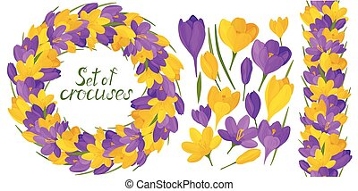 Round frame with beautiful yellow and lilac crocuses. Vector set of flower elements. Colorful image.