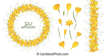 Round frame with beautiful yellow crocuses. Vector set of flower elements. Colorful image. frame with beautiful yellow crocuses. Vector set of flower elements. Colorful image.