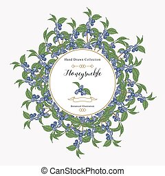 Round frame with honeysuckle plant. Hand drawn berries and leaves of honeysuckle. Vector illustration botanical.