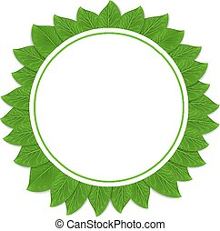 Round green frame with leaves. Vector illustration.