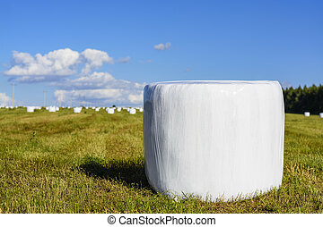 Round hay bales in plastic wrap cover