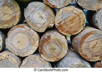 Round logs stacked stack of wood background