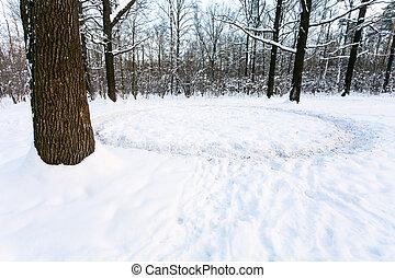 round path trodden in snow on meadow in oak grove