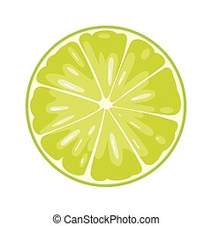 Round slice of lime on white background. Flat color illustration