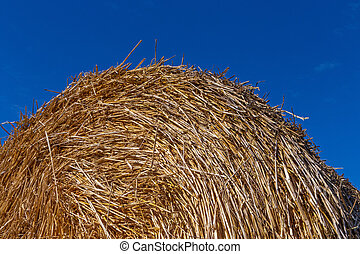 stack of straw against blue sky