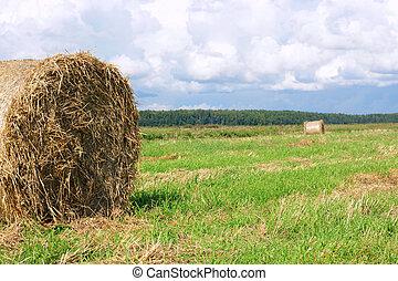 Round straw bales