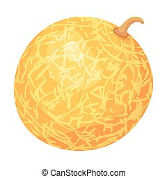 Round yellow whole melon. Vector illustration on white background.