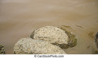 Rounded rock in the middle of a water form