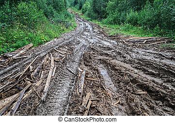 route, après, forêt, pluie, terre