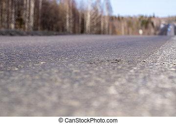 route, asphalte, forest., beau, voyage