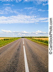 route - asphalted road goes into the distance through the...