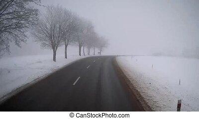route, brumeux, camion, hiver, conduite