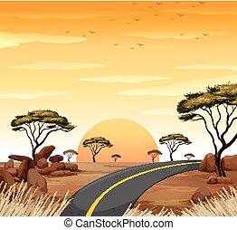 route, coucher soleil, scène, vide, savane
