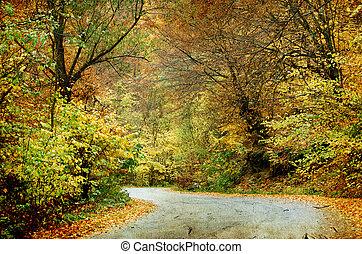 route, courber, forêt, automne