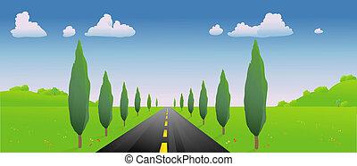 route, dans, les, printemps