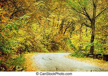 route, forêt, automne