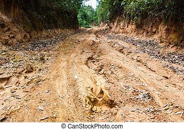 route, forêt, pluie, terre