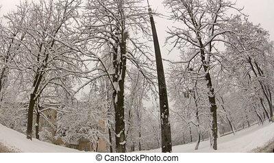 route, hiver