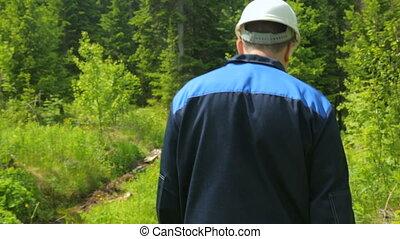 route, long, ouvrier, forêt, marche