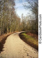 route, printemps, tourner, forêt, asphalte