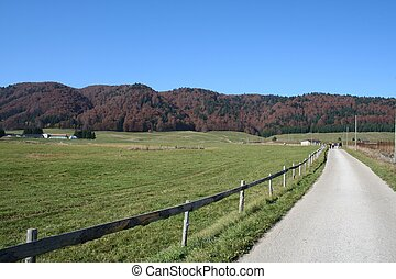 route, rouges, collines