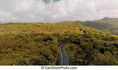 route, vue aérienne, île, travers, beau, forêt