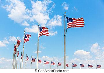 Row American flags in Washington DC